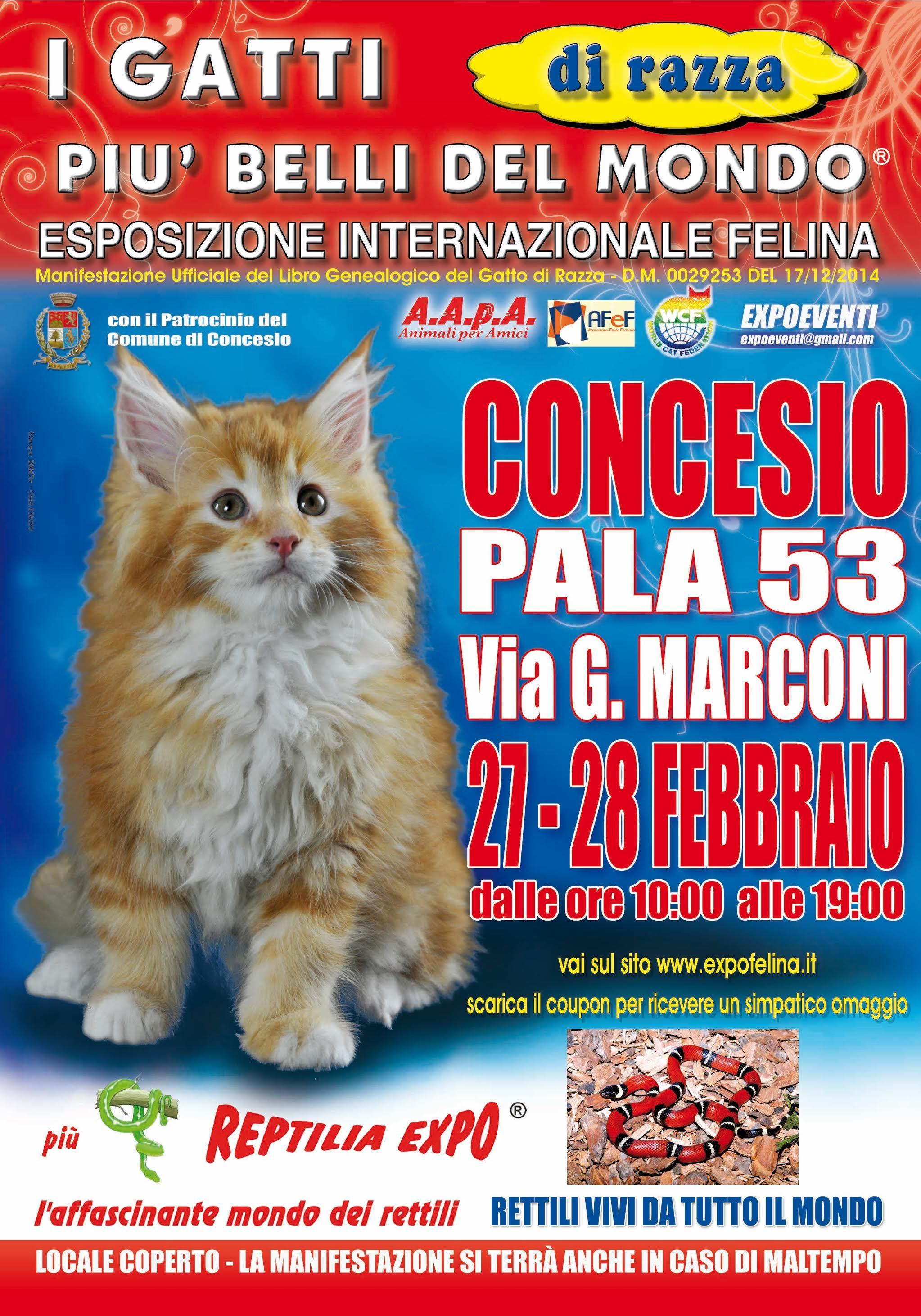 locandina_felina Concesio-2