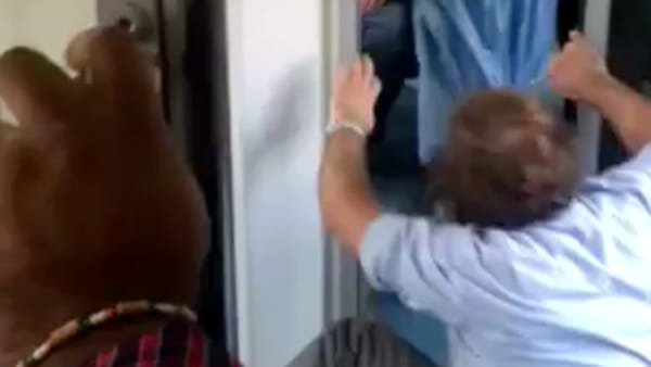 Rissa migrante-controllore: un frame del video © Bresciatoday.it