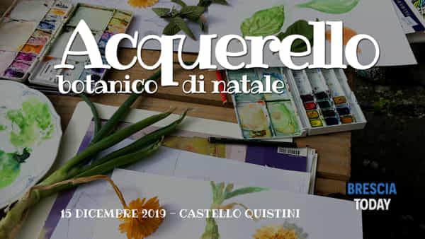 Rovato: workshop acquerello botanico di natale