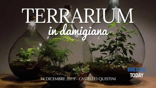 Rovato: Corso terrarium in damigiana
