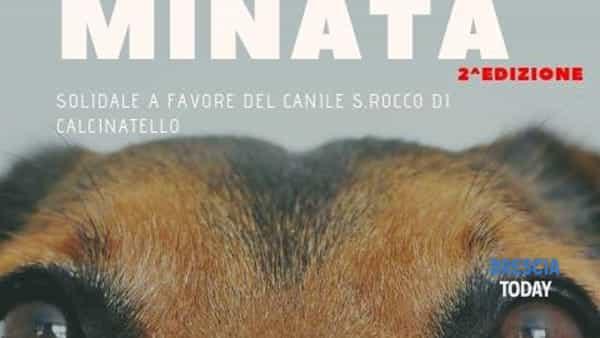 Carpenedolo: Can-minata solidale 2.0