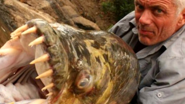 Jeremy Wade con un 'River Monster' (fonte Facebook)